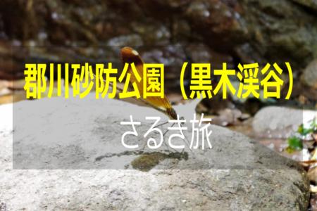 """【大村市】郡川砂防公園(黒木渓谷)を""""さるく""""!!"""
